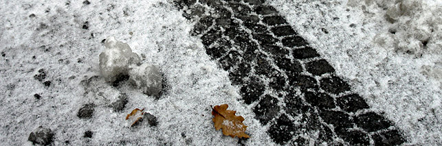 snow_header_2